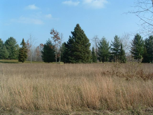 Vacant Golf Course Frontage For Sale – Oscoda, MI