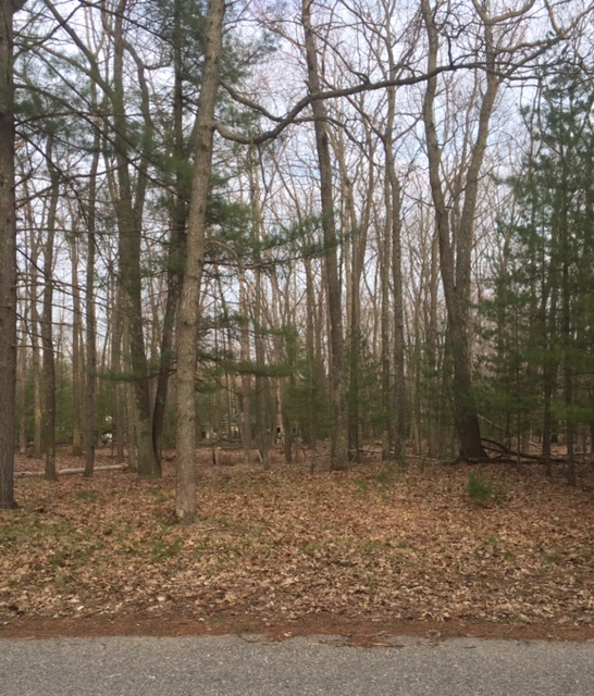 Just outside LWS! – 2 Lots ready for your dream home!