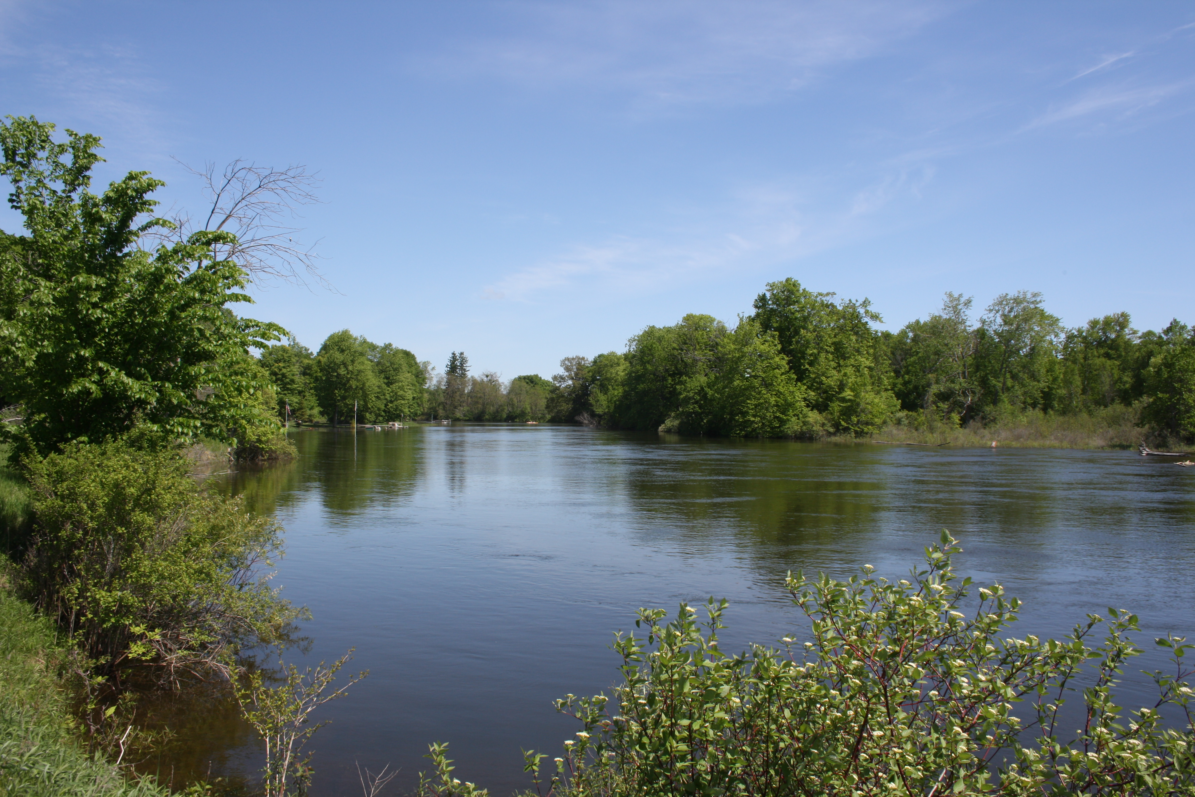 110 feet on the AuSable River