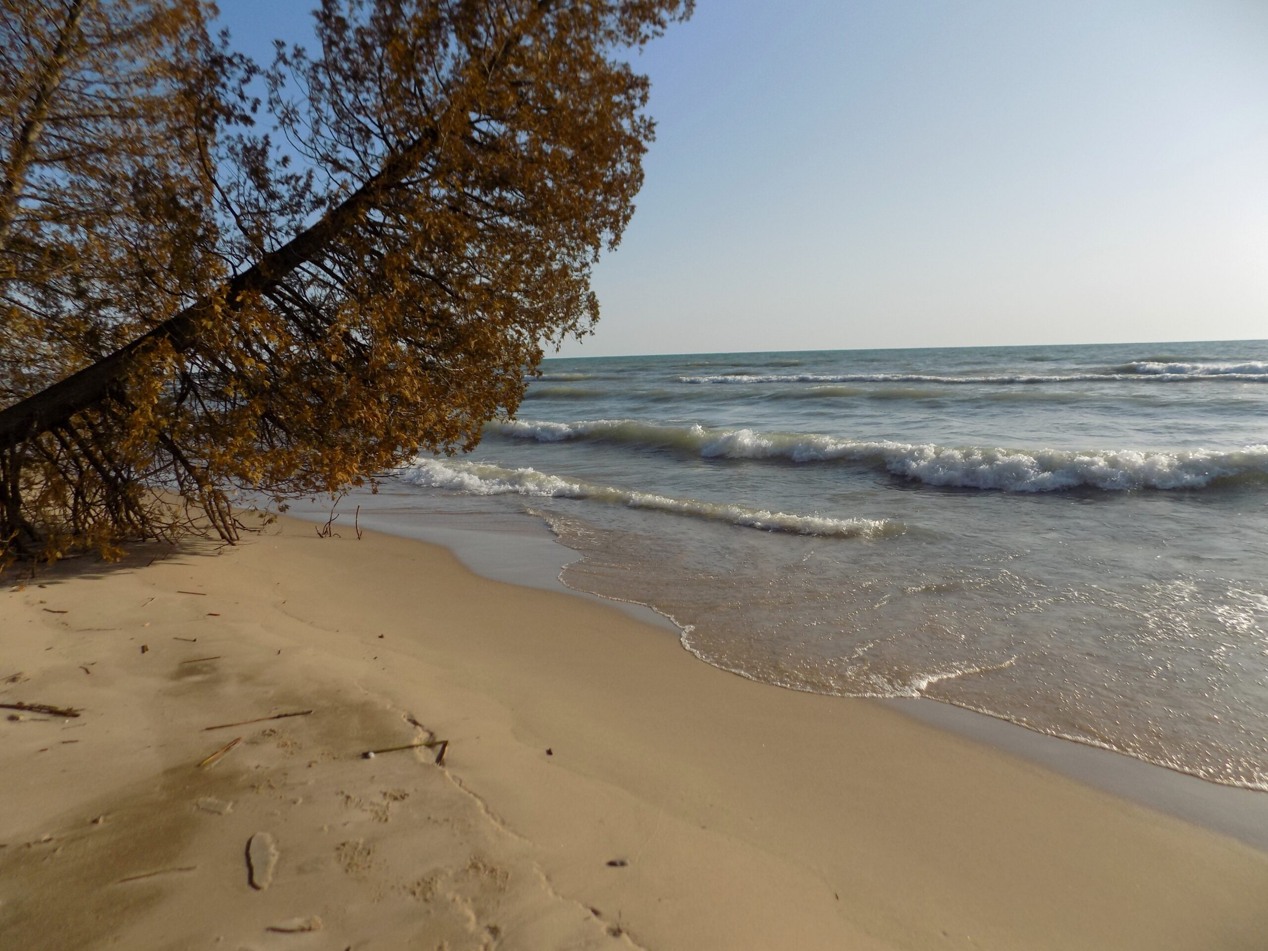 SPECTACULAR LAKE HURON BEACH- Vacant Land